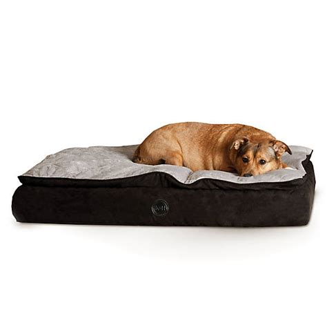 cat beds petsmart k h feather top orthopedic pet bed dog orthopedic beds