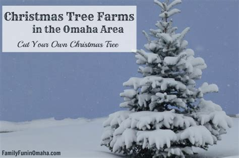 28 best christmas tree farms in my area area christmas