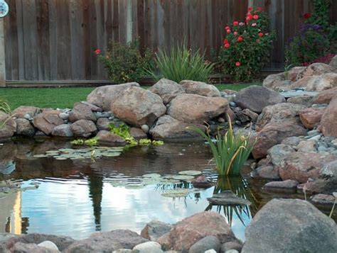 Landscape Supply Tracy Ca Water Garden Pond Supplies Vivai E Giardinaggio 1852 W