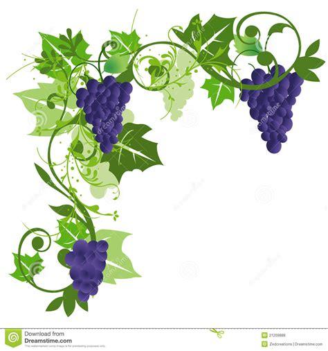 grape stock vector illustration  branch blue border