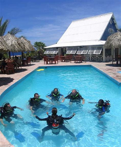 dive resorts lions dive resort in curacao with u s dive travel