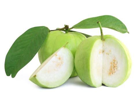 amazing benefits  guava organic facts