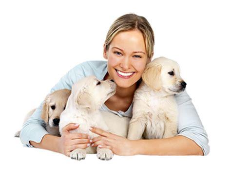 pet care few ways how to treat your pet edeals