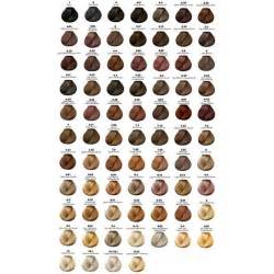 ash hair color chart 29 best images about loreal hair color on best