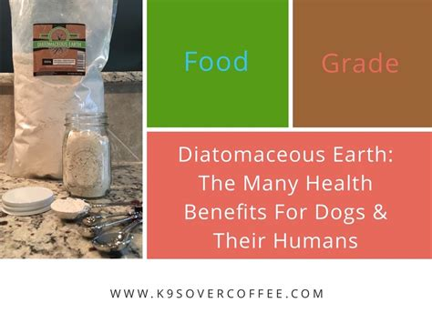 diatomaceous earth food recipes food