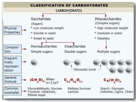 carbohydrates classification classification of carbohydrates
