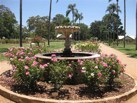 queensland state rose garden toowoomba rosarium toowoomba