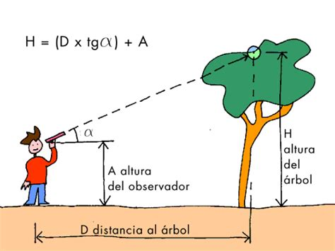 imagenes de razones matematicas trigonometr 237 a escuelapedia recursos educativos
