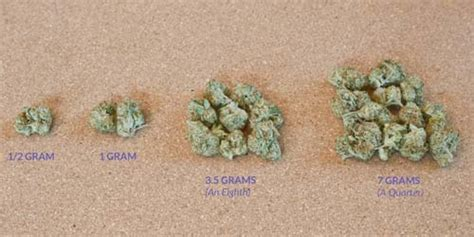 what is a l marijuana ratios 101 what is an eighth potguide com