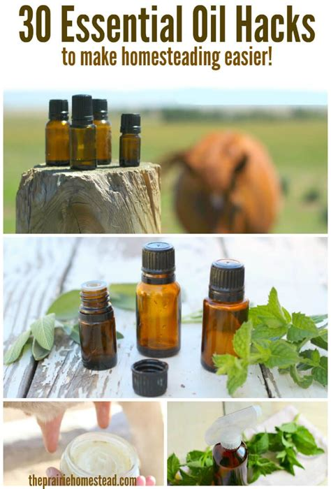 essential hack how to get 17 best images about diy personal care products on tea tree and peppermint