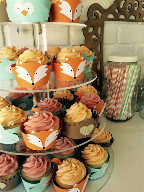 animal two boy and one woodland creatures cupcakes fox owl hedgehog one year