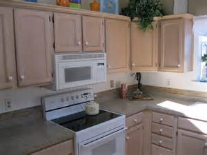 Kitchen Paneling Backsplash Kitchen Nice Affordable Kitchen With Beadboard Cabinet