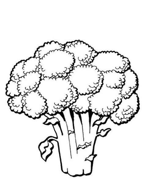 imagenes para pintar verduras dibujos de verduras para pintar dibujos de vegetales para