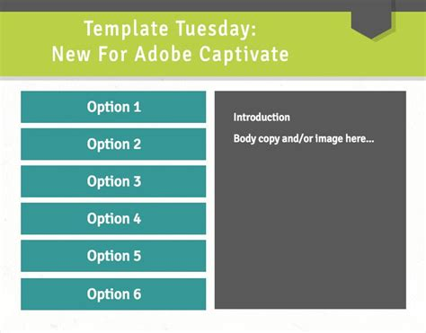captivate elearning templates 1000 images about adobe captivate templates on