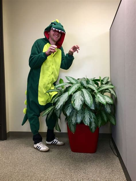 55 best costumes for the office images on