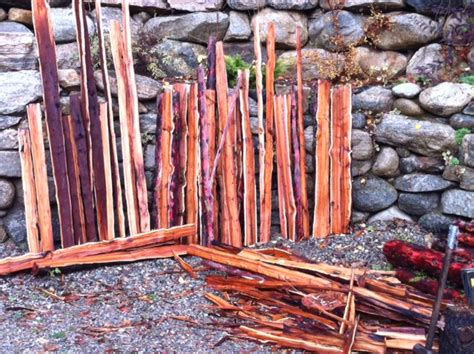 your own yew longbow bow building workshops with