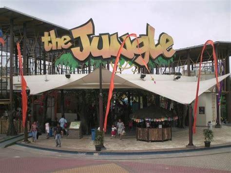 cineplex bogor the jungle alam priangan