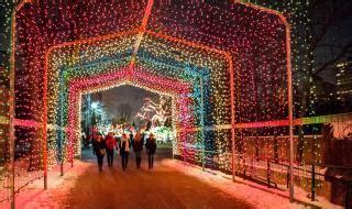 christmas  chicago holiday  parades lights