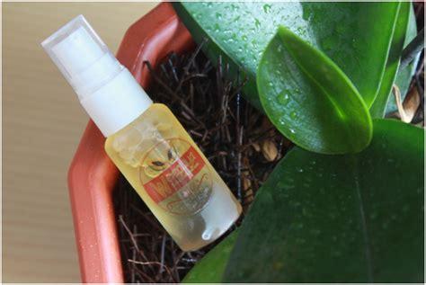 Sabun Muka Farmasi mahasiswa um purwokerto ciptakan sabun muka weepaya dari biji pepaya suara muhammadiyah