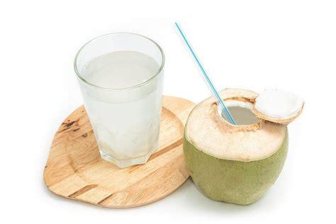 membuat zpt air kelapa benarkah ibu hamil harus sering minum air kelapa muda