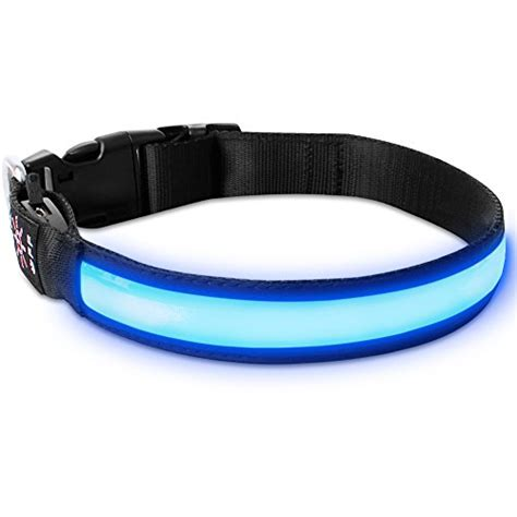 led collar light 5 best led light up collars staying visible at