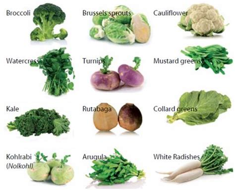 vitamin e vegetables list in tamil the power of crucifers part 1