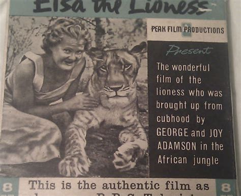 film elsa the lioness collectibles from born free elsa adamsons