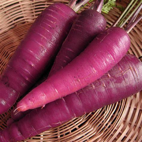 carrot juice photos