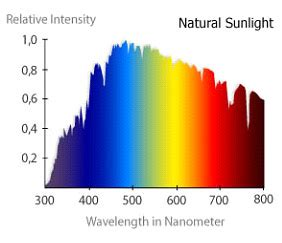 plant growth light spectrum light spectrum and plant growth led grow lights
