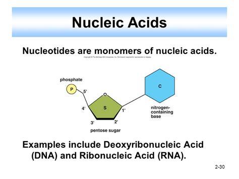 exle of nucleic acid organic molecules organic molecules are found in living