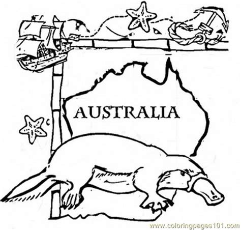 australia animal coloring page free australia coloring