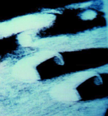 sulla fotografia realt e 8806169068 storie di immaginaria realt 224 c 232 vita sulla luna gdritalia