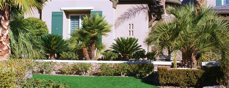 Backyard Landscaping Las Vegas by Triyae Backyard Desert Landscaping Ideas Las Vegas