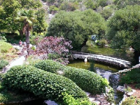 Japanese Garden San Antonio by View From The Pavilion Picture Of Japanese Tea Gardens