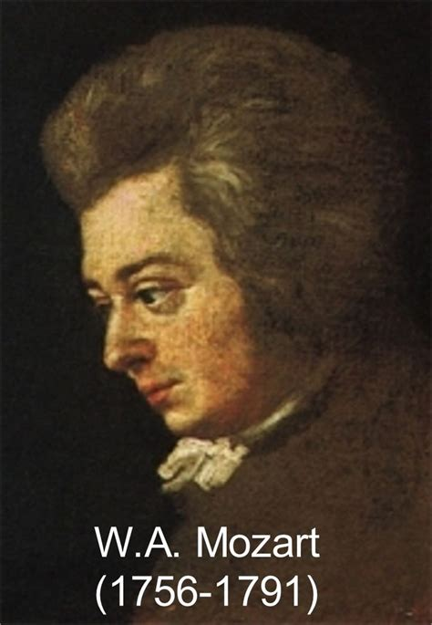 mozart born in austria wolfgang amadeus mozart was born in the sovereign