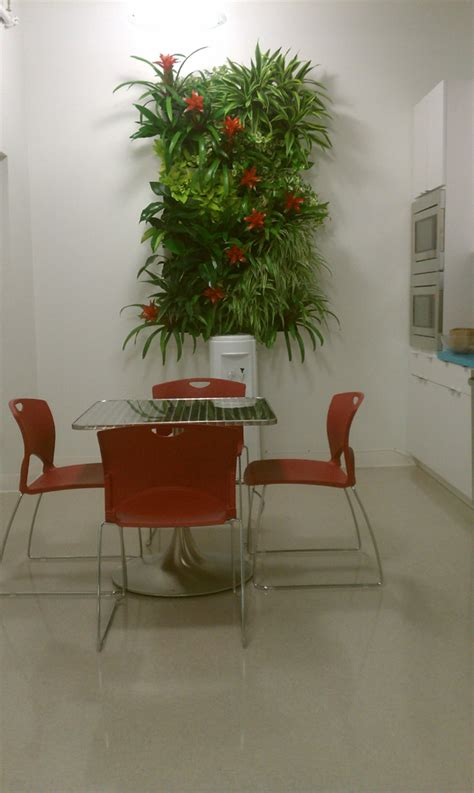 indoor plant maintenance doesn t need to be cumbersome