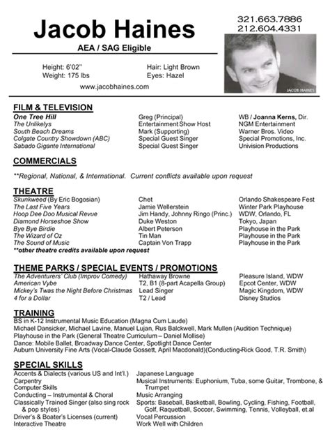 Example Of Resume Format For Artist PDF Download Standard