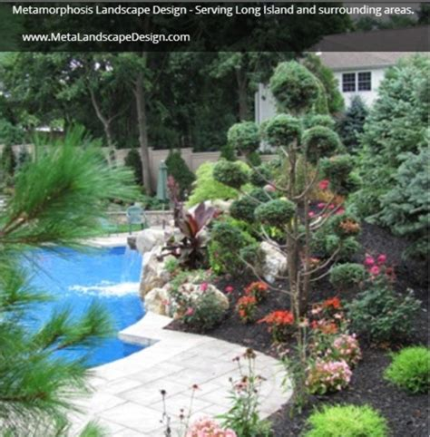 landscaping ideas for pool area landscaping your pool area metamorphosis landscape design