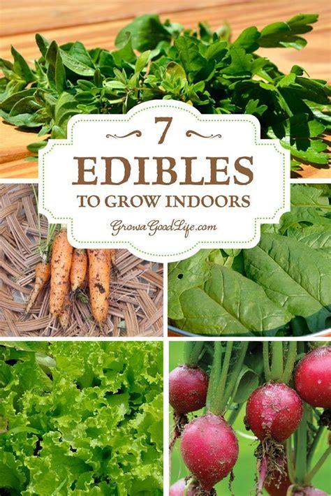 Best 25 Hydroponic Lights Ideas On Pinterest Grow Indoor Gardening Vegetables