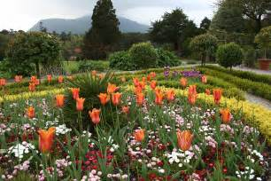 file flower garden at muckross house jpg