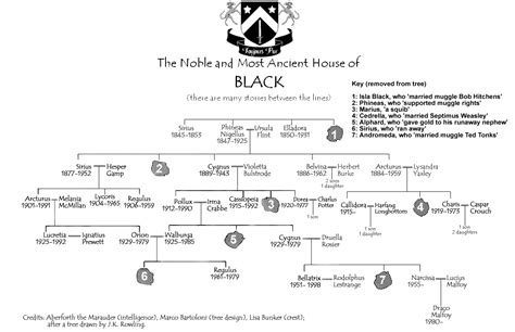 the cole family tree potter family and friends der schatten an seiner seite harry potter fanfiction