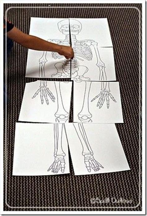 Printable Toddler Size Skeleton | pinterest