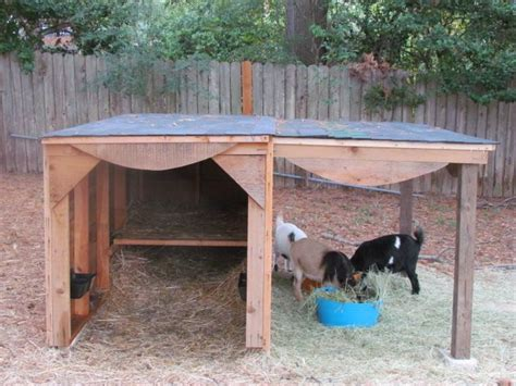 Goat Shed For Sale by Best 25 Pygmy Goat House Ideas On Goat House