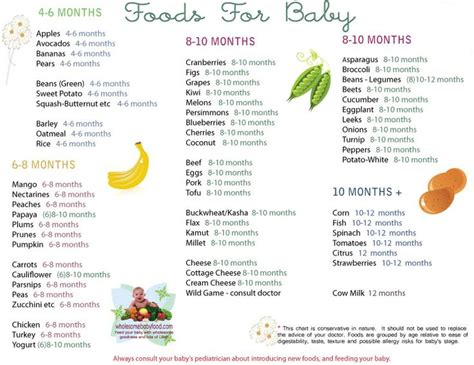 introducing to baby solid food chart for babies aged 4 months through 12 months find age appropriate