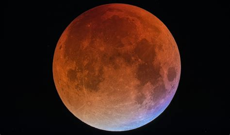 Hong A Blood Moon time out hong kong events attractions what s on in