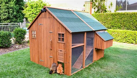 The Mansion Walk In Chicken Coop Designed In Australia Backyard Chicken Coops Australia