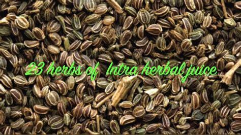 Intra Herbal the 23 herbs in intra herbal juice