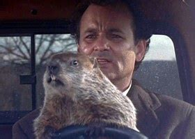 groundhog day reddit how many iconic 90s you seen