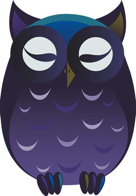 Animasi Burung Hantu Owl Bird owl purple 183 free vector graphic on pixabay