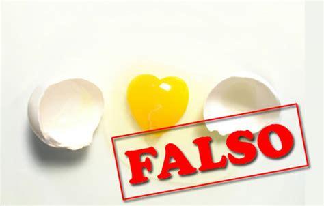 q proteinas tiene el huevo vidafit los cinco mitos huevo en tu dieta